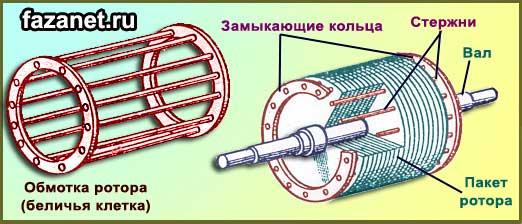 korotkozamknutyy rotor